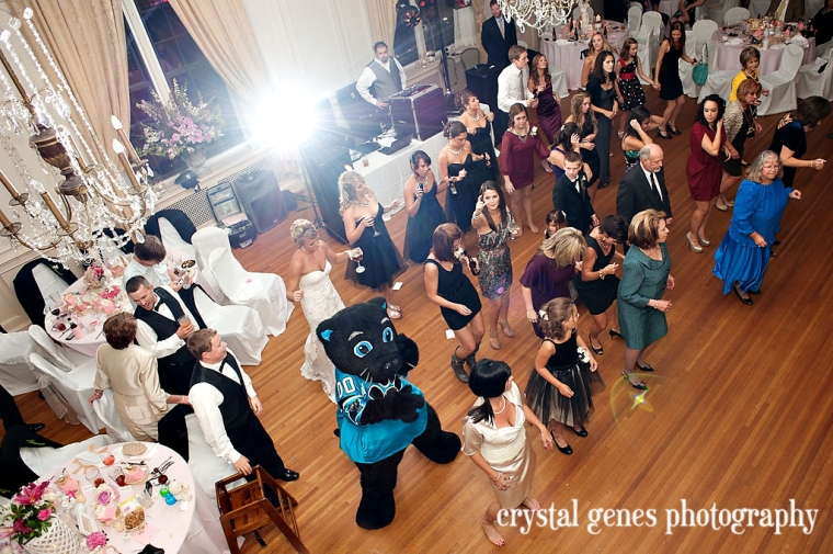 sir purr dances the cupid shuffle during a wedding reception at the concord hotel in nc
